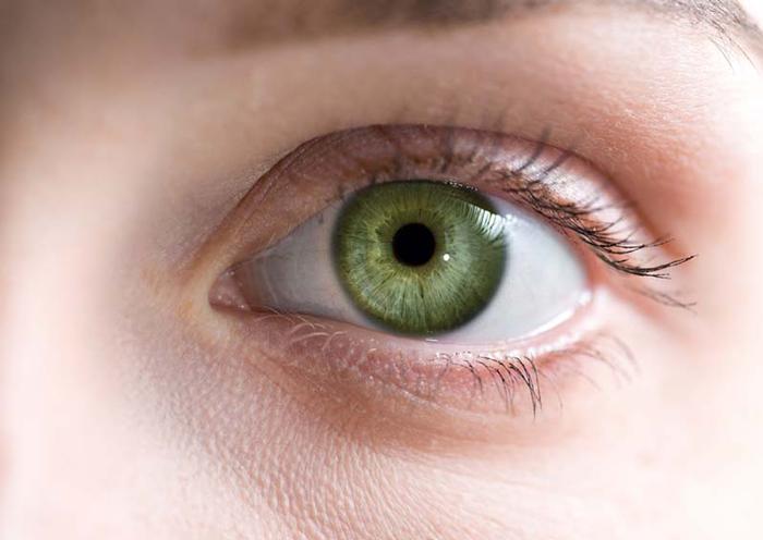 Image result for Los ojos, una ventana para detectar otras enfermedades